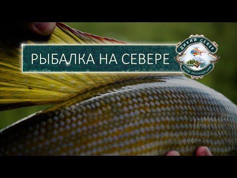 Рыбалка на севере с клубом экспедиций