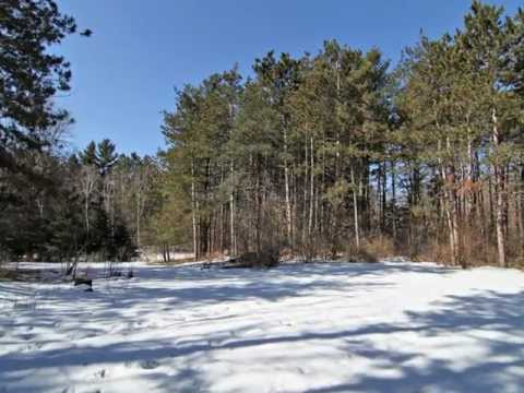 Beautiful, Wooded 6 Acre Burnsville Homesite with Remodel Potential! 2605 Valley View Road