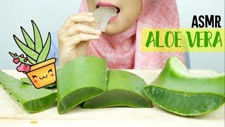 Video ASMR Eating Sounds Challenge: Aloe Vera    먹방    ASMR Indonesia MP3, 3GP, MP4, WEBM, AVI, FLV Juli 2018