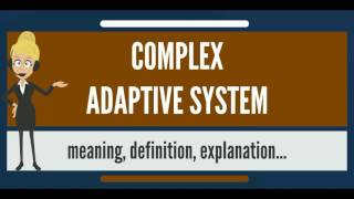 What is COMPLEX ADAPTIVE SYSTEM? What does COMPLEX ADAPTIVE SYSTEM mean? C