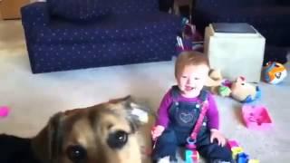 فيديو طفل تصيبه نوبة من الضحك عند رؤية كلبه يأكل فقاعات الصابون!