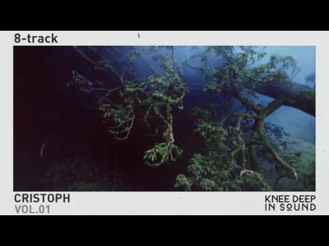 Cristoph - Perplexity (8-track)