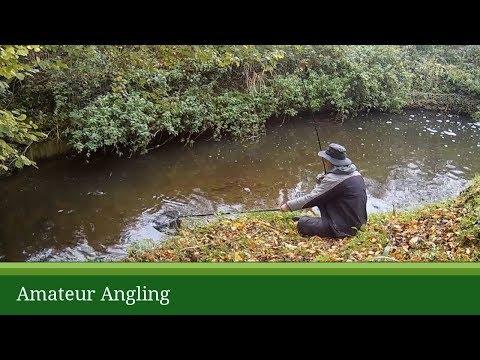 Small river float fishing for chub (видео)