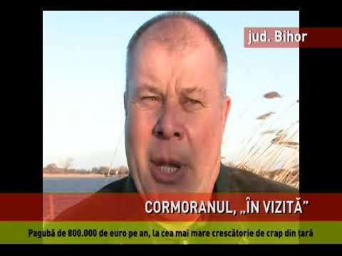 Crescătoriile de peşte din România, în pericol