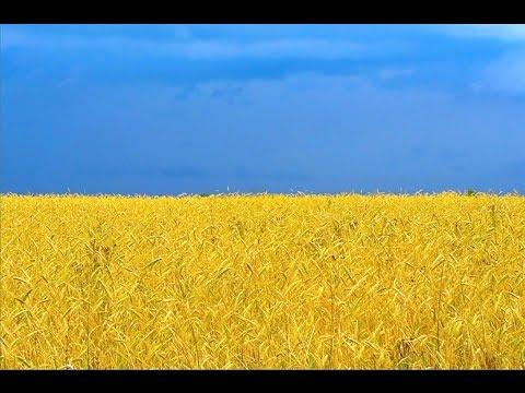 Фільми українською мовою, українське кіно