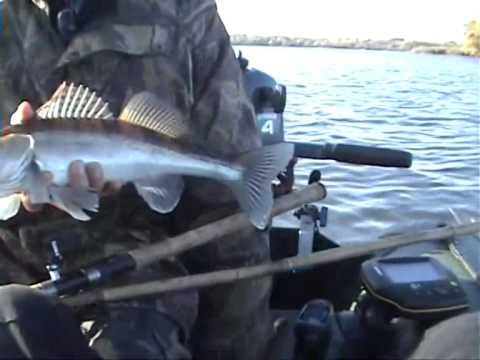 ловля рыбы с лодки на днепре