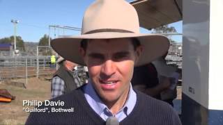 Bothwell Australia  City pictures : Bothwell Weaner Sale 2015