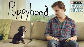 Download Youtube: Puppyhood
