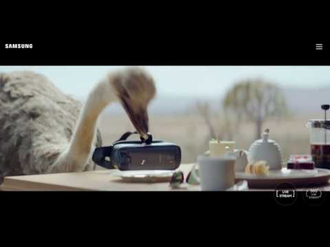 Do What You Can't Samsung Best Commercial - #DoWhatYouCant Ostrich