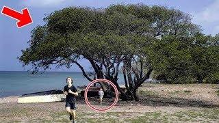 Video Jika Lihat Pohon Seperti ini Segera Lari, BAHAYA !! Tak disangka ternyata pohon ini... MP3, 3GP, MP4, WEBM, AVI, FLV April 2019