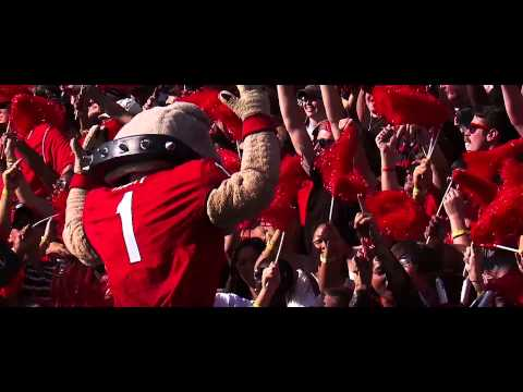 Georgia Bulldogs Football Hype 2013