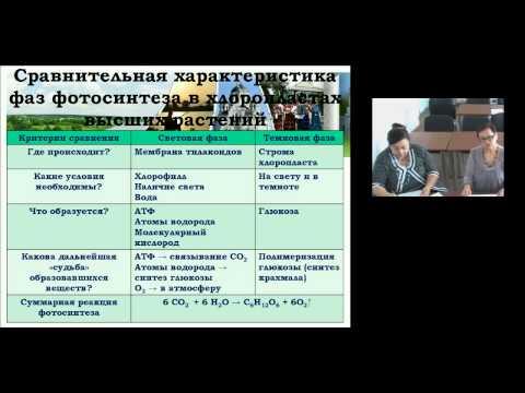 Обеспечение качества образовательного процесса на основе использования инновационных форм обучения биологии средствами УМК издательства «ДРОФА»