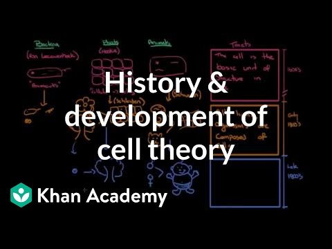 History and development of cell theory (video)   Khan Academy