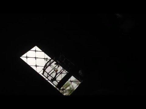 curio pardinho canto mateiro Santa Fé do Araguaia tocantins