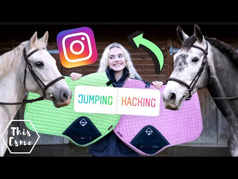 Instagram Controls My Equestrian Life for 24hours! AD 2020 | This Esme