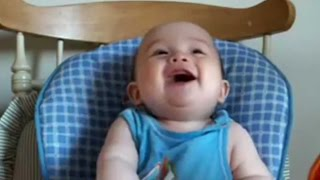 Best Babies Laughing Video