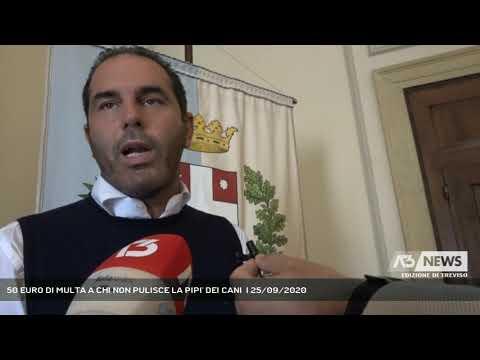 50 EURO DI MULTA A CHI NON PULISCE LA PIPI' DEI CANI  | 25/09/2020