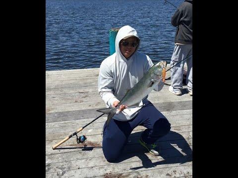 NJ Bluefish Invasion – May 2015