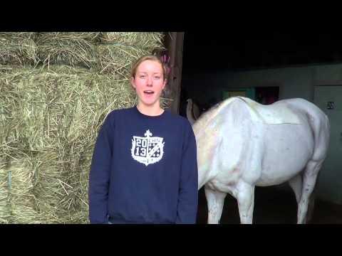 Horseback Riding Documentary