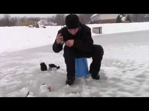 Pond Ice Fishing For Bluegill And Bass