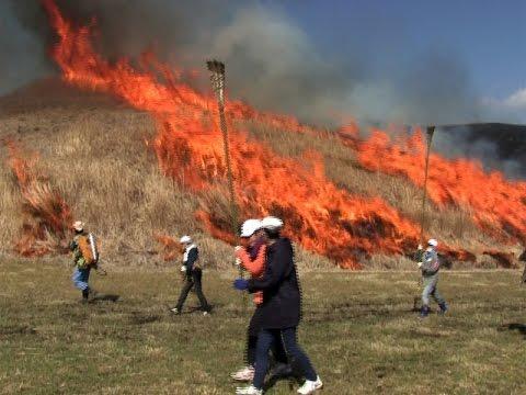 阿蘇市立阿蘇小学校の5年生が野焼き体験