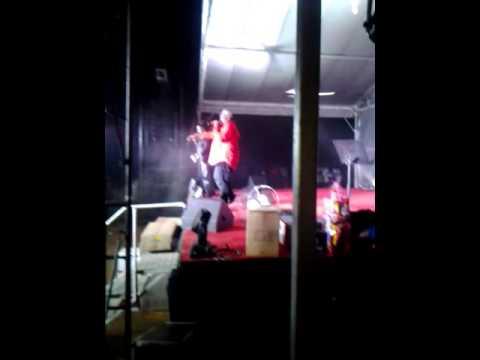 Hervin Life Concert Image
