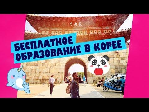ГРАНТ НА ОБУЧЕНИЕ В КОРЕЕ для РУССКИХ (видео)