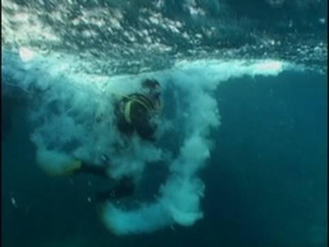 Duikers overleven tsunami