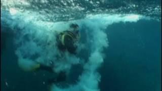 Video Scuba Diving in a Tsunami MP3, 3GP, MP4, WEBM, AVI, FLV November 2018
