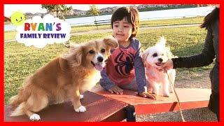 Kids fun playtime at playground and dog park with Ryan