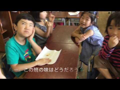 和光鶴川小学校 2年生 生活べんきょう