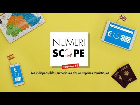 Numériscope HS #2 Les outils numériques des entreprises touristiques