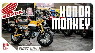 1. 2019 Honda Monkey | First Ride