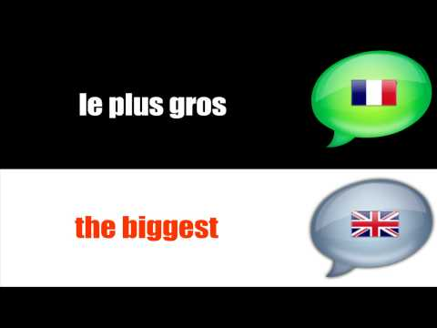 SURVIVAL FRENCH : THE SUPERLATIVE