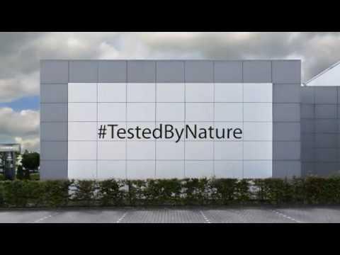 Diresco - Wall cladding installation video