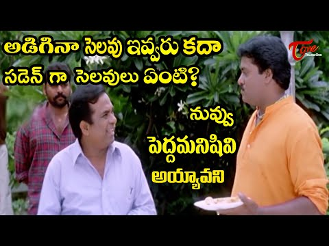Brahmanandam And Sunil Comedy Scenes Back To Back | Latest Telugu Movie Comedy Scenes | TeluguOne