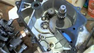 4. Polaris Phoenix 200 Transmission Problem Part 1