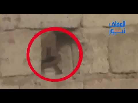 شاهد..جماعة الحوثي تكثف خروقاتها ونشر عناصرها في خطوط التماس داخل مدينة الحديدة