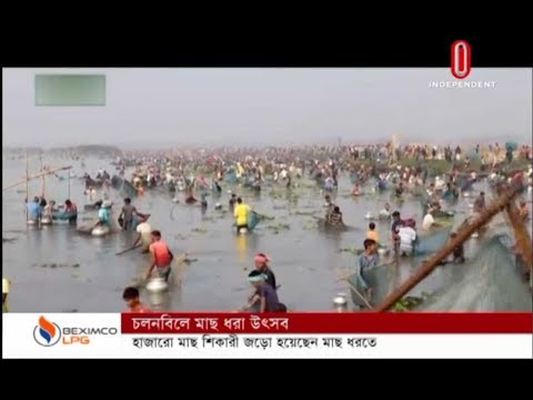 Boal, shoal are being netted in Chalanbeel fishing festival (04-12-19) Courtesy: Independent TV