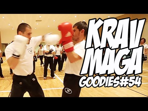 Goodies#54 : Krav Maga avec Hervé Gonçalves et Franck Conejero