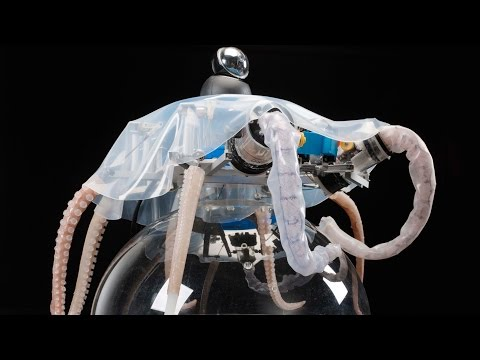 OctopusInspired Robots Can Grasp Crawl and