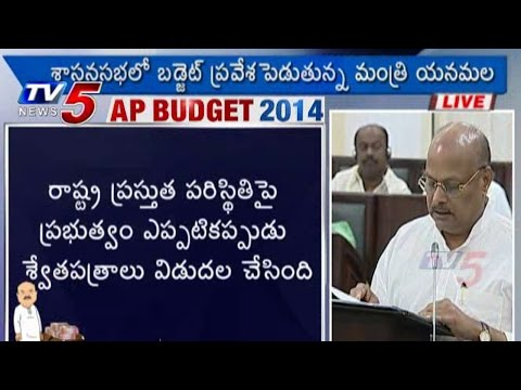 AP Budget 2014 | Social Welfare Sector : TV5 News