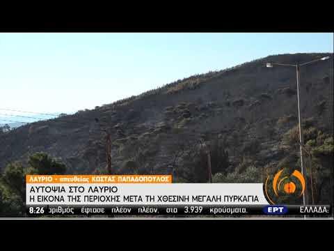 Αυτοψία στο Λαύριο | Η εικόνα της περιοχής μετά τη χτεσινή μεγάλη πυρκαγιά | 17/07/20 | ΕΡΤ