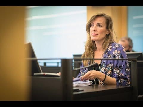 Intervención de Carmen Navarro durante la comparecencia de Cruz Fernandez Mariscal
