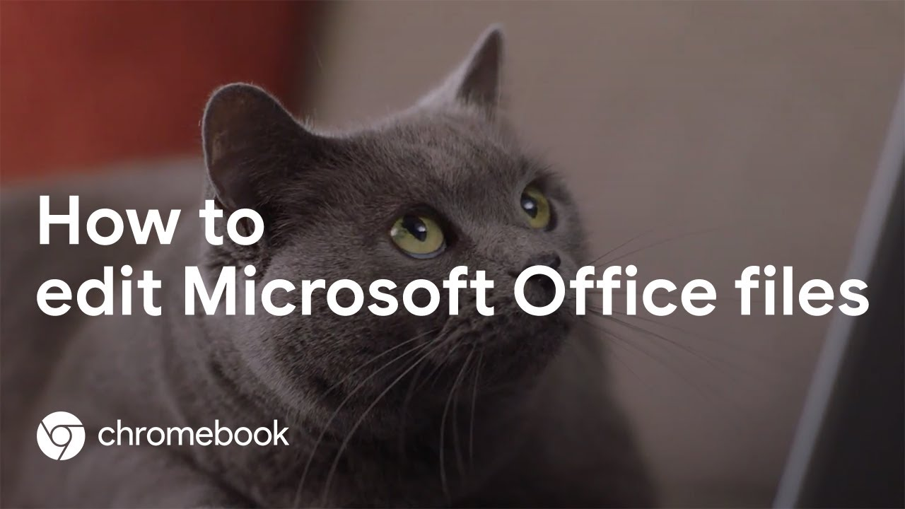 Editing Microsoft Office files on a Chromebook is the cat's meow. Follow the instructions below.