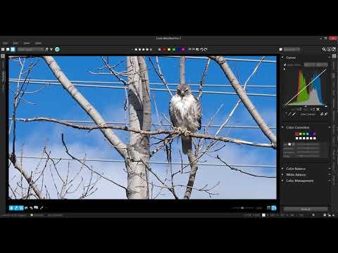 AfterShot Pro 3 Introduction