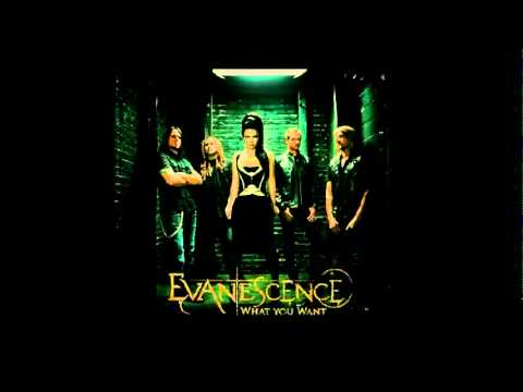 Evanescence - What You Want (new single 2011) testo + traduzione