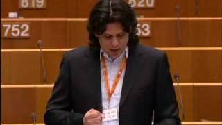 A Deutsch-jelentés plenáris vitája