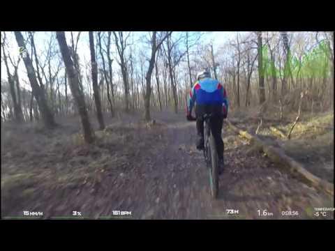 Circuit du bois de Longueval à ROMORANTIN
