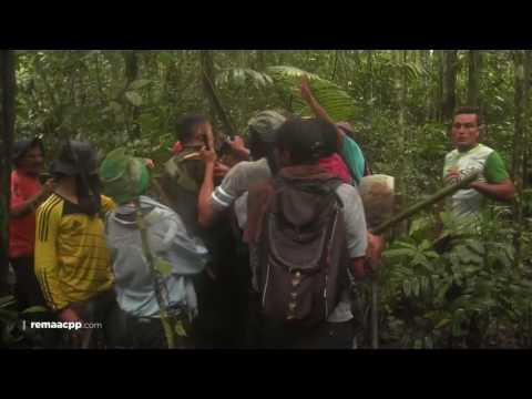 video de retencion de policia en meta por cultivadores de coca.
